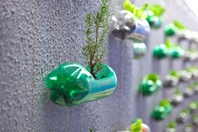 Huerto escolar botellas plastico y otros materiales reciclados (2)