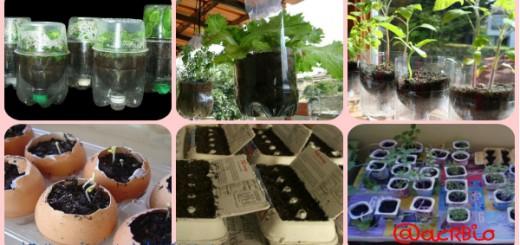 Huerto escolar botellas plastico y otros materiales reciclados Collage Portada