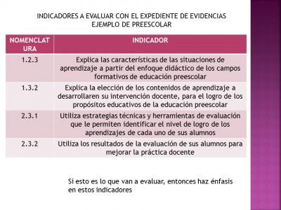 Portafolio o expediente de evidencias (35)