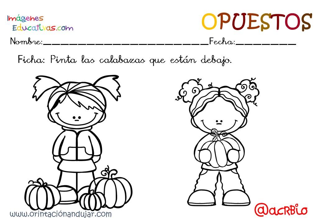 Cuaderno otoño opuestos IE (18) - Imagenes Educativas