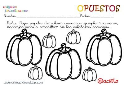 Cuaderno otoño opuestos IE (3)