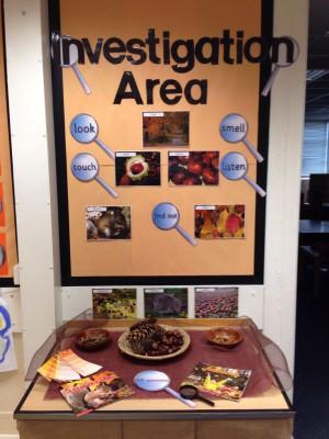 Montessori área de ciencias y naturaleza 4