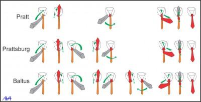 Nudos de Corbata (5)