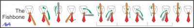 Nudos de Corbata (8)