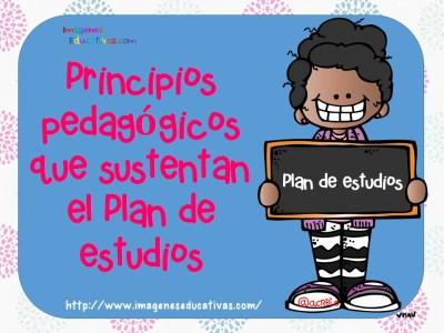 Principios pedagógicosque sustentan el Plan de estudios (1)