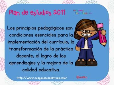 Principios pedagógicosque sustentan el Plan de estudios (2)
