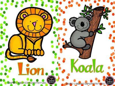 Tarjetas De Animales De Zoológico Y Hábitats (14)