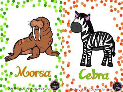 Tarjetas De Animales De Zoológico Y Hábitats (9)