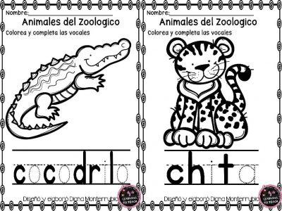 actividades-animales-de-zoologico-12