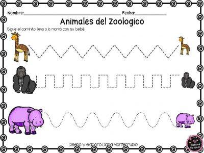 actividades-animales-de-zoologico-14