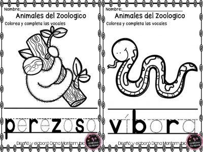 actividades-animales-de-zoologico-5