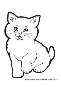 Dibujos Para Colorear De Animales Oviparos Y Viviparos Imagenes