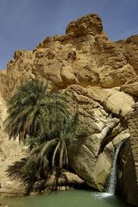 Cascade près de la source de l'oasis de montagne de Chebika - Tunisie 2009