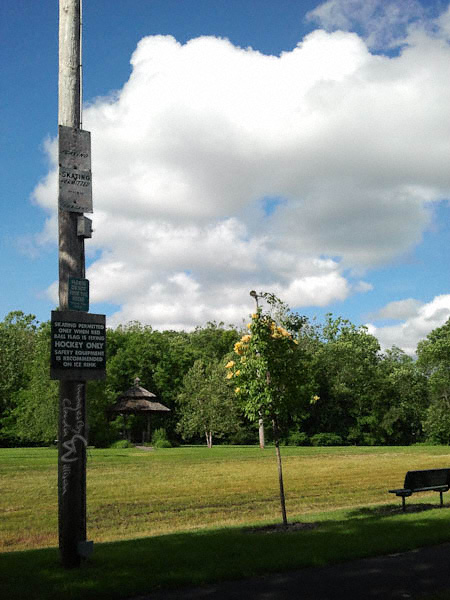 Central Park, Whippany, New Jersey