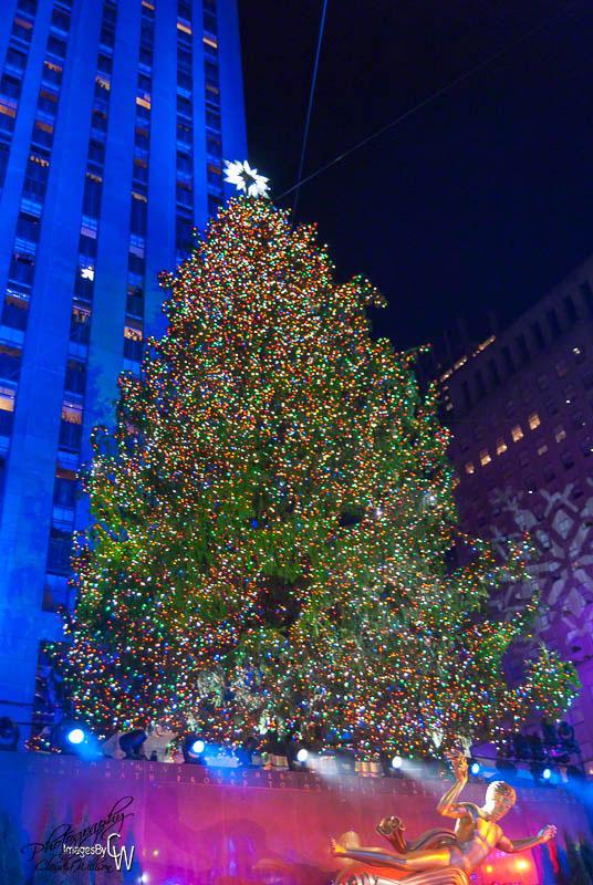 Rockefeller, Tree Lighting, 2012, Christmas, xmas