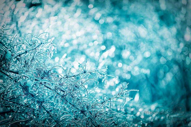 ice, light, bokeh, turquoise