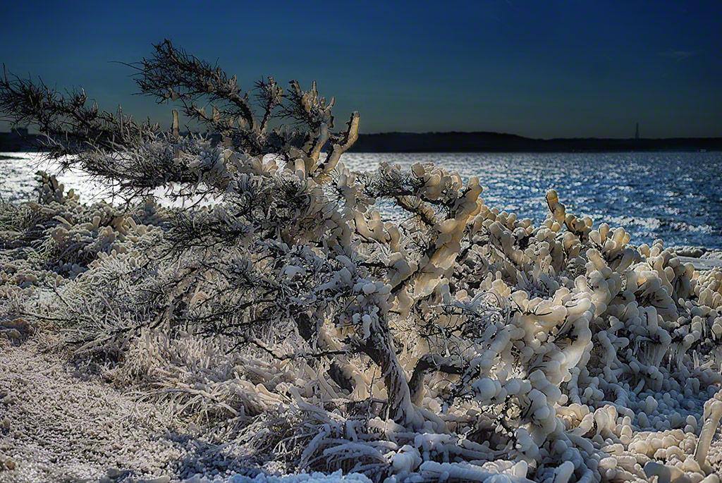 ice, winter, statue, sandy hook, nj