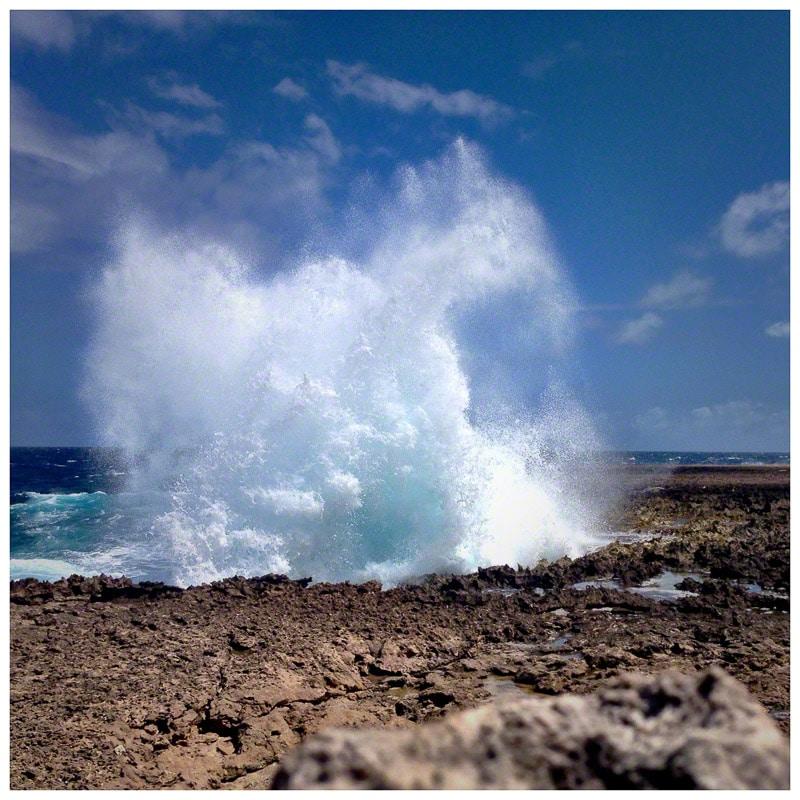 ocean, wave, bonaire, surf