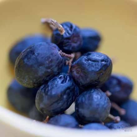 grapes, raisins, macro