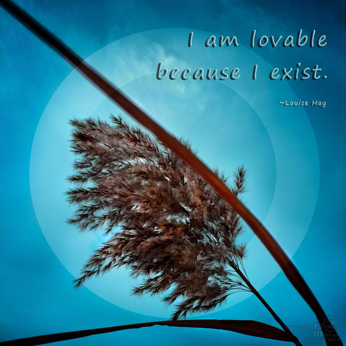quote, louise hay, lovable