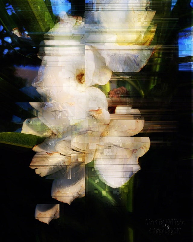 flower, abstract