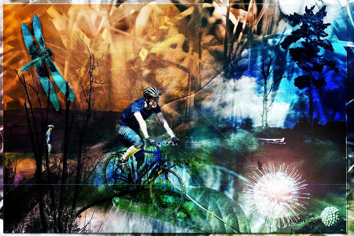 david, composit, grunge, bicycle