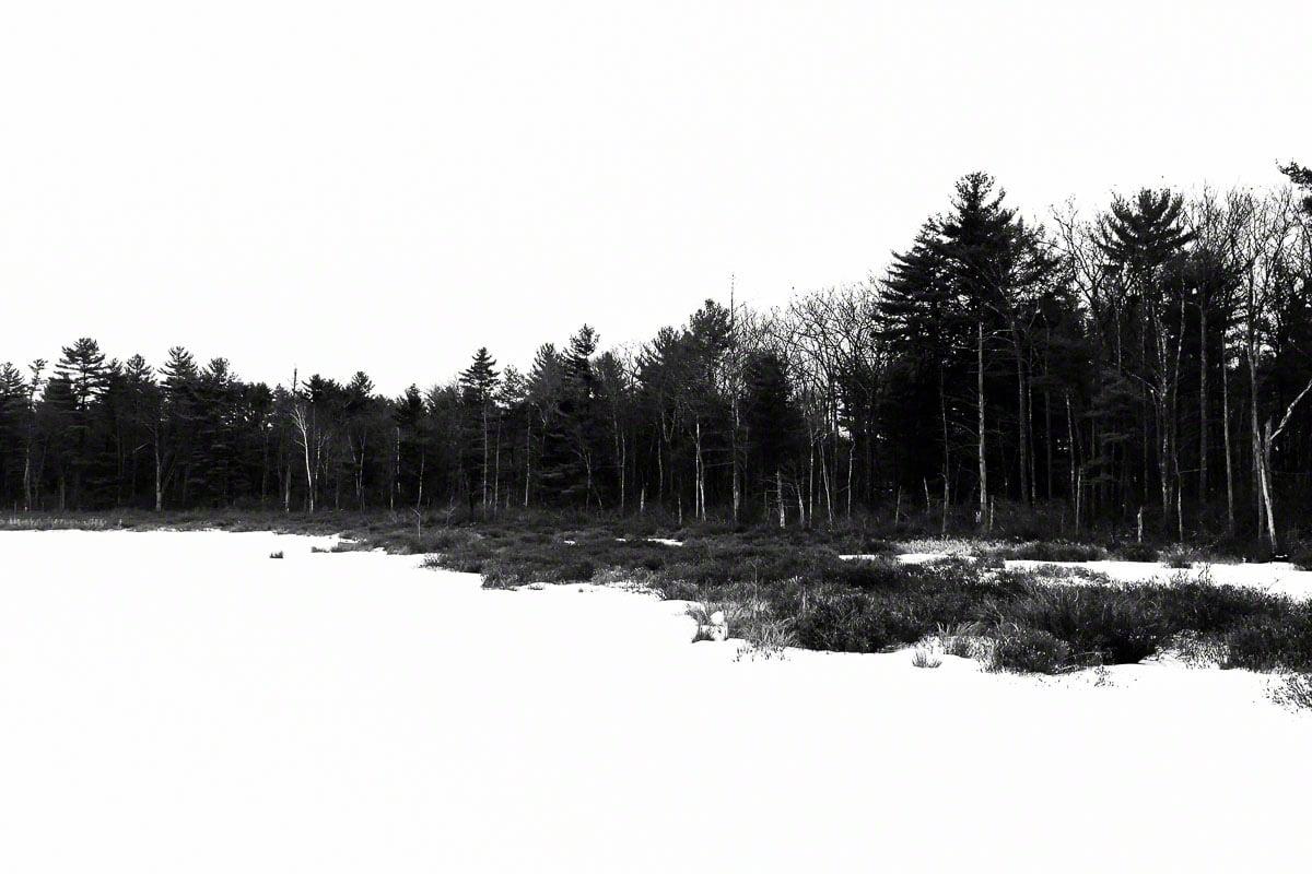 woodloch winter