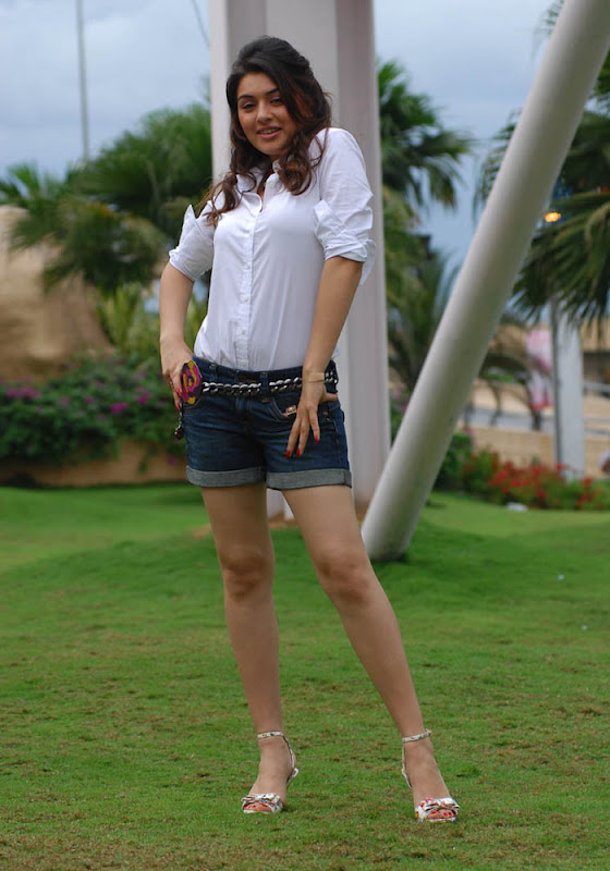 Hansika Latest Hot Spicy Photo