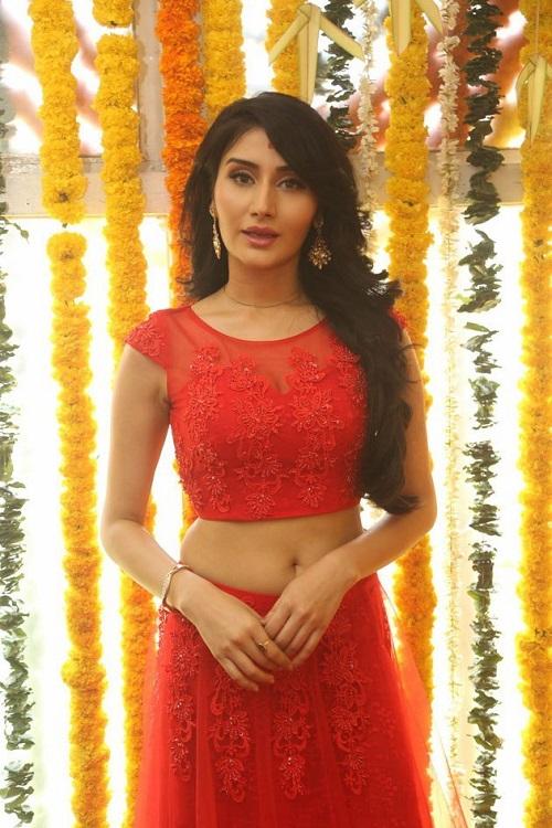 Monica Sharma Hot Navel Photo Shoot