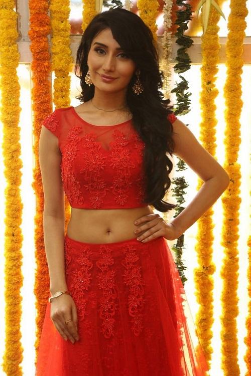 Monica Sharma Hot Navel Photo