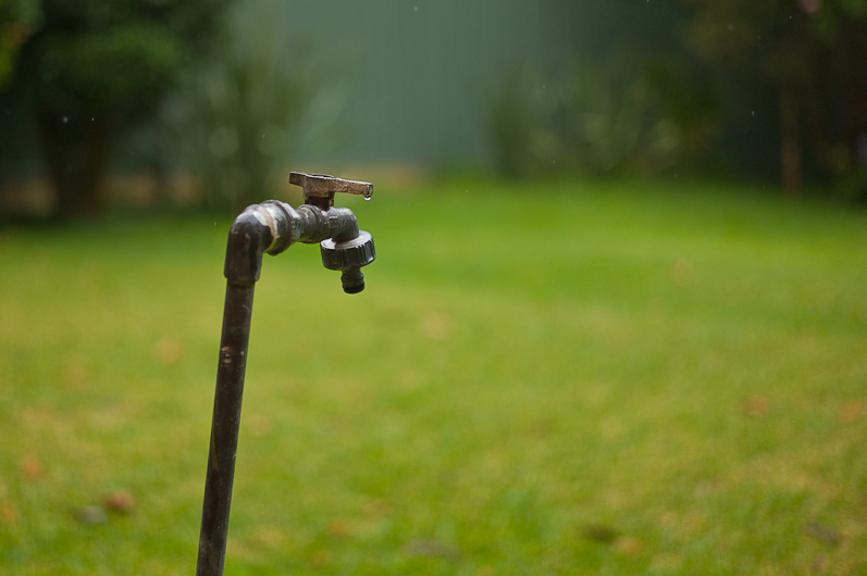 The water tap in the backyard