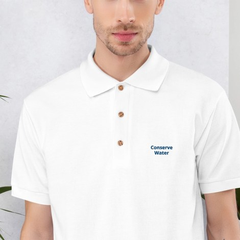 classic-polo-shirt-white-zoomed-in-608dd5f07d0ac.jpg