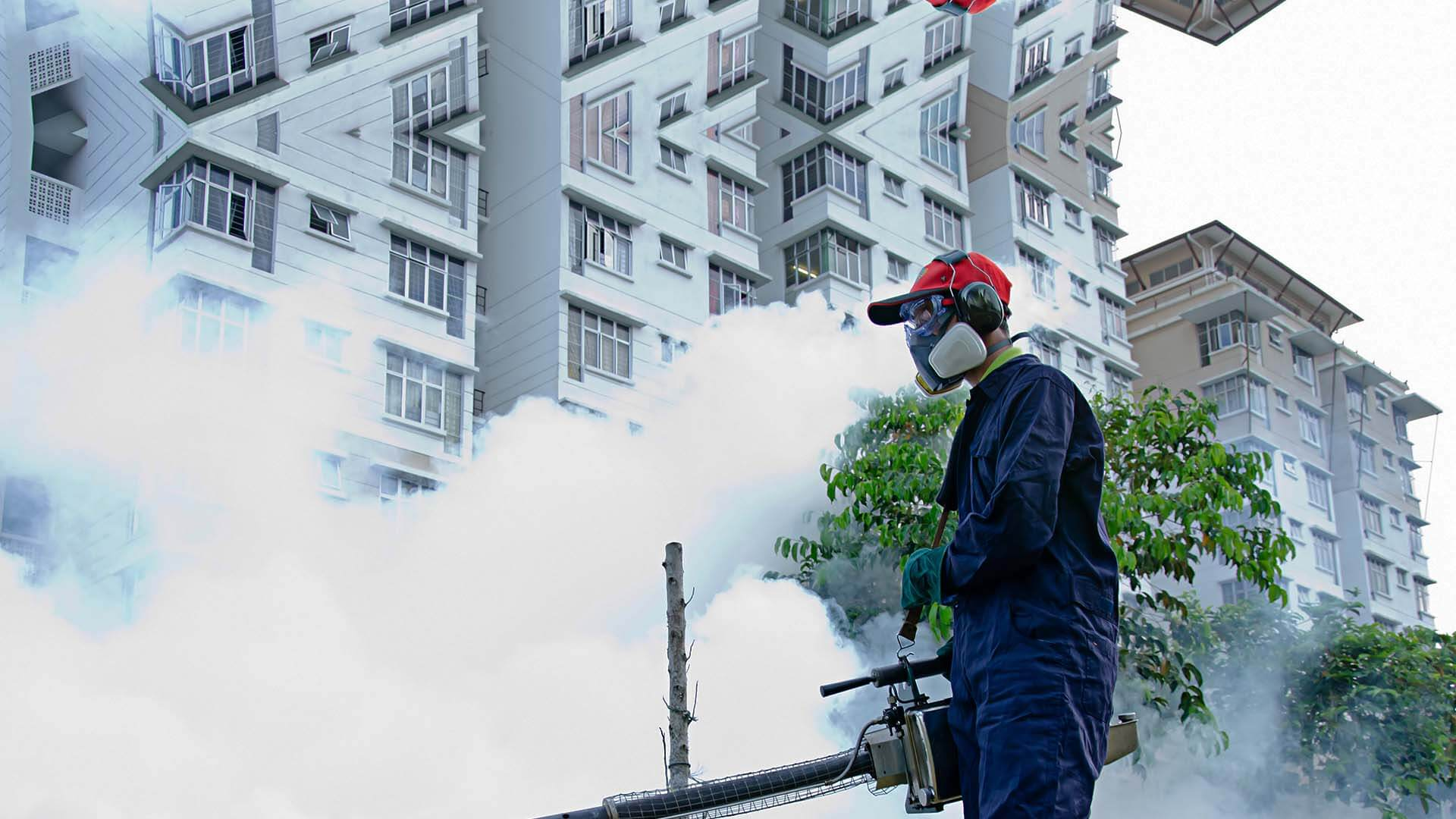 Imagine Care Cleaning Pest Control Fumigation