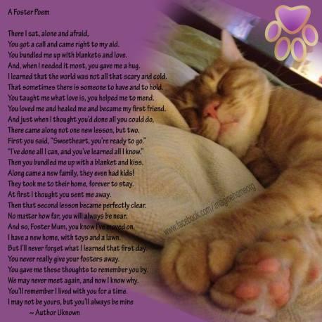 Foster-Poem
