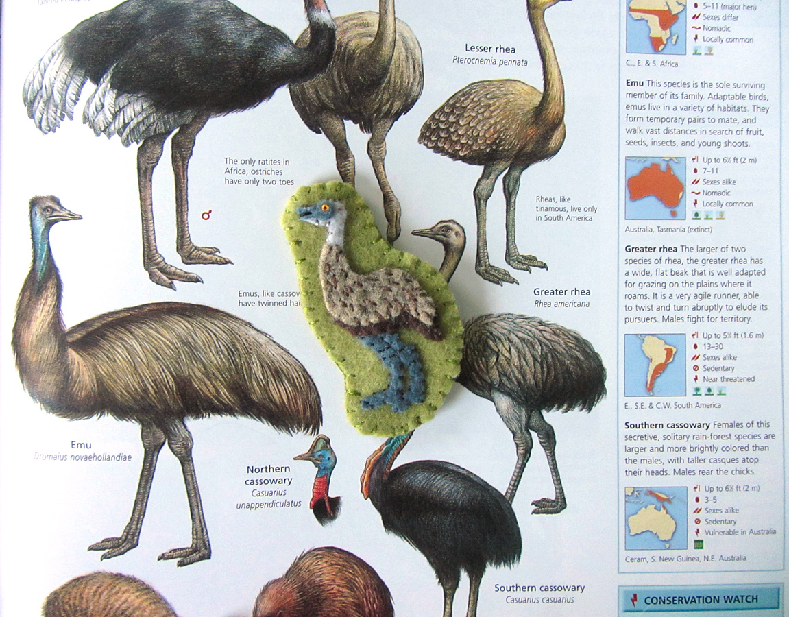 Animals Of Australia For The Montessori Wall Map Amp Quietbook With Printables