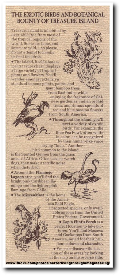 treasure_island_description_birds