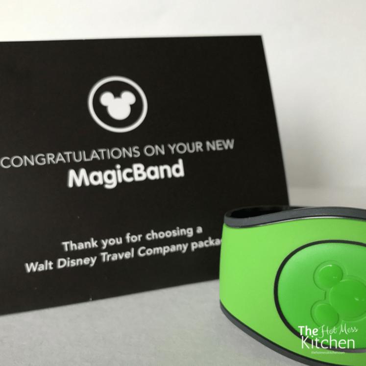 magicband magicbands