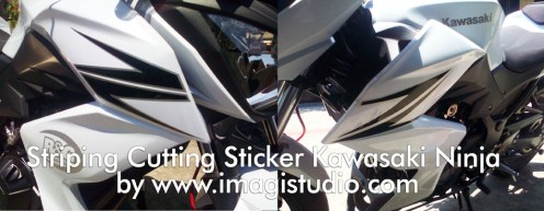 Striping Cutting Sticker Kawasaki Ninja