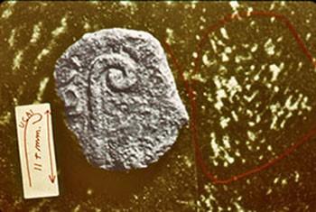 Abb. 67: Fotomontage von Francis Filas: Pilatus-Münze mit dem Augurenstab, erkennbar sind die Buchstaben UCAI. Links davon erläuternde Zeichnung von Filas.