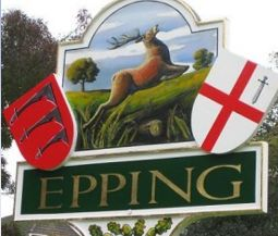 Web Design Company Epping