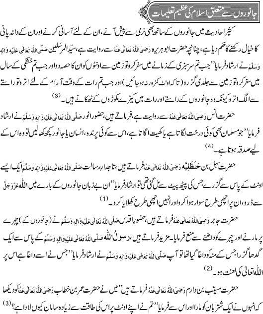 Janwaroon Say Mutaliq Islam Ki Taleemat