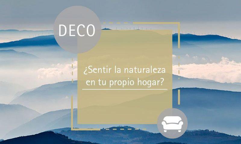 naturaleza-galicia-fotografía-decoración