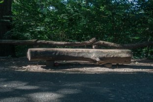 Thursday - Bench