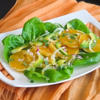 orange avocado fennel salad