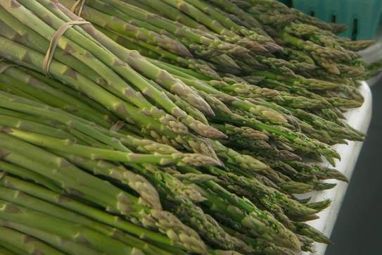 pAsparagus-size1