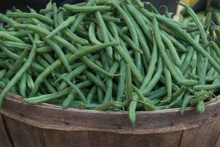 pGreenBeans-size1