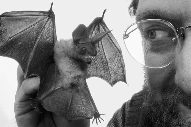 pZook bat-size1