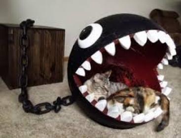 19 Ideas DIY habitación para gatos (1)