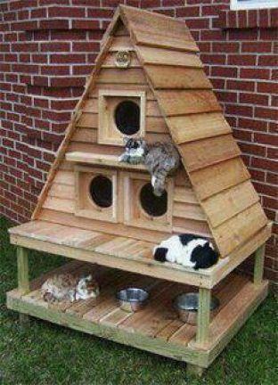 Ideas DIY para crear espacios para gatos (12)