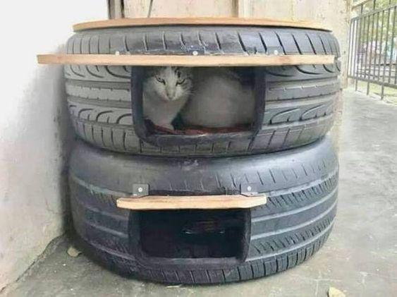 Ideas DIY para crear espacios para gatos (7)
